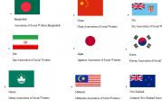پرچم ایران در سایت فدراسیون بین المللی مددکاری اجتماعی به اهتزاز درامد