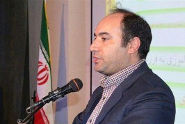 اهمیت برگزاری کنگره بین المللی ۶۰ سال مددکاری اجتماعی در ایران