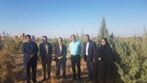 بازدید از بوستان مددکاران اجتماعی در سفر موسوی چلک به گناباد